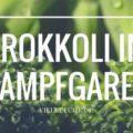 Tipps und Tricks zur Zubereitung von Brokkoli im Dampfgarer