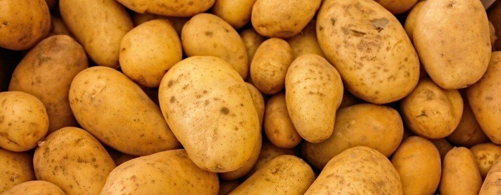 Kartoffelbrot – Die Erdknolle mal anders