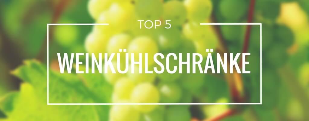 Top 5 Weinkühlschränke